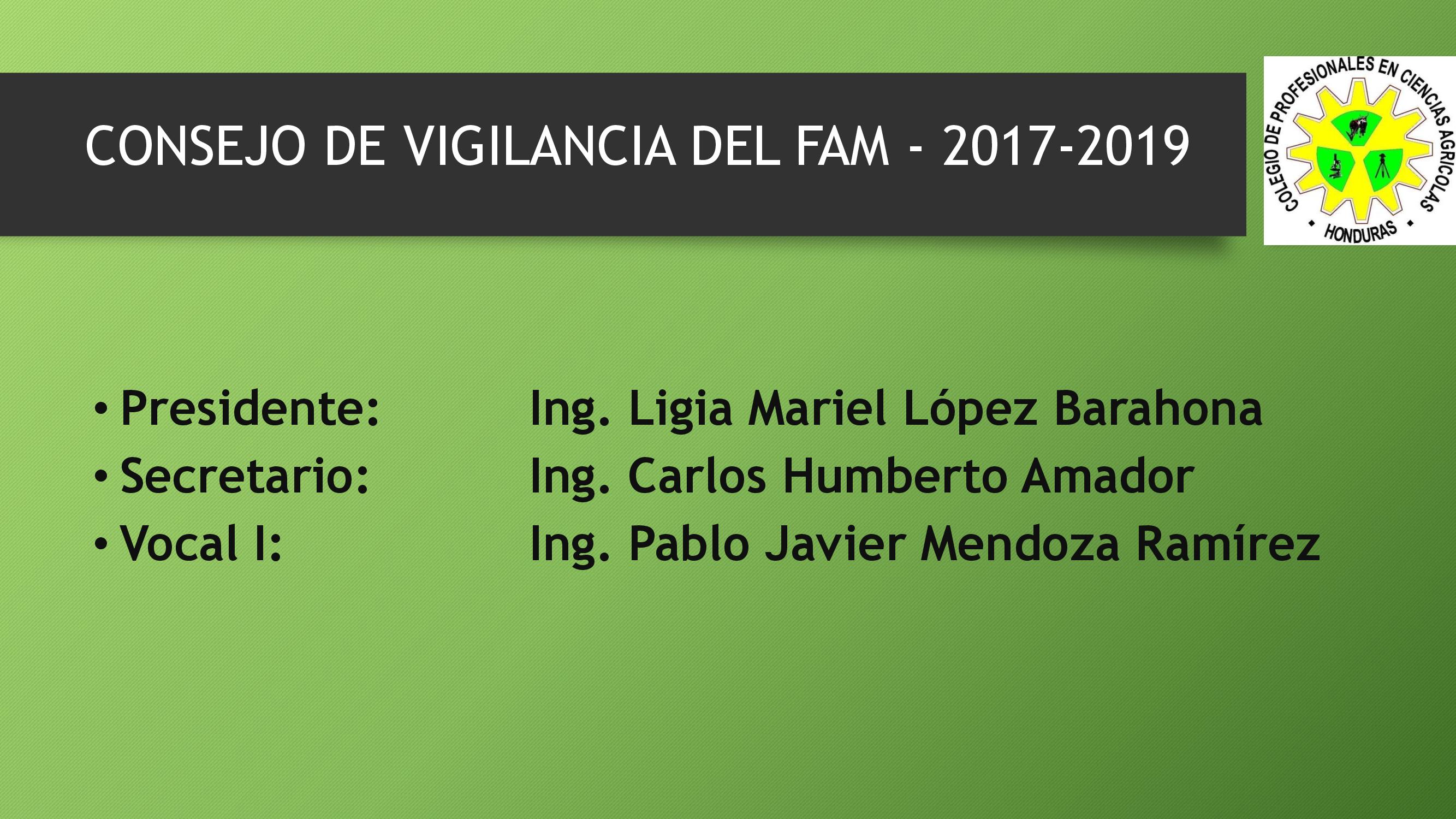 CONSEJO DE VIGILANCIA FAM
